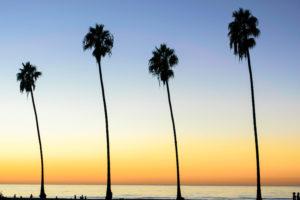 California obu sports
