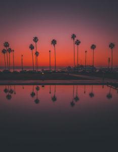 Kalifornien Sonnenuntergang Palme